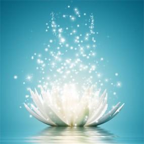 Drop-in Meditation Classes